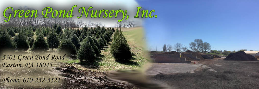 Greenpond Nursery - Lehigh Valley, PA